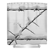 Barbwire Fence In Snow 1 Shower Curtain