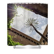 Barcelona Courtyard With Palm Tree Shower Curtain