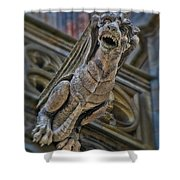 Barcelona Dragon Gargoyle Shower Curtain
