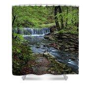 Bard Springs Shower Curtain
