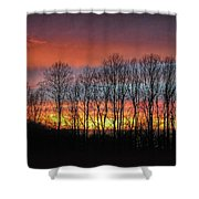Bare-branched Beauty Shower Curtain