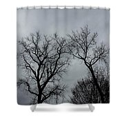 Bare, Raw, Cold Winter Day  Shower Curtain