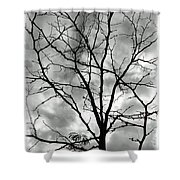 Bare Til Spring Shower Curtain