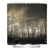 Bare Trees In A Winter Sunset Shower Curtain