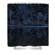 Bare Trees Reflected Shower Curtain