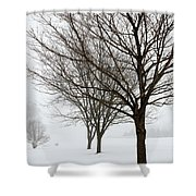 Bare Winter Trees Shower Curtain