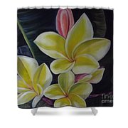 Barely Blushing Shower Curtain