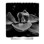 Baring Her Soul - B/w3 Shower Curtain