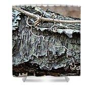 Bark - Lichen - Cat Brier Tendrils Shower Curtain