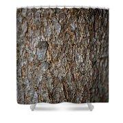 Bark 2 Shower Curtain