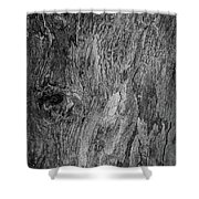 Bark At The Moon Shower Curtain