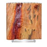 Bark Kc05 Shower Curtain