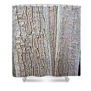 Bark, Moringa Tree Shower Curtain