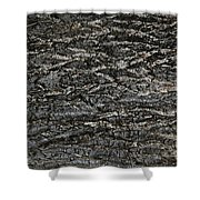 Bark Texture Shower Curtain