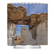 Barking Seal Window-v Shower Curtain