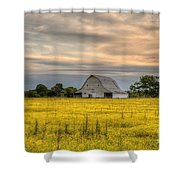 Barm In A Yellow Field Shower Curtain