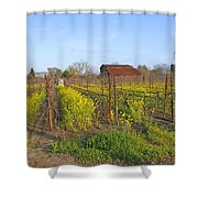 Barn Among The Wild Mustard Shower Curtain