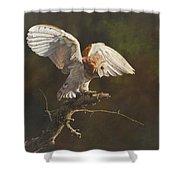 Barn Owl Shower Curtain by Alan M Hunt
