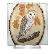 Barn Owl - Enduring Insight Shower Curtain