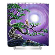 Barn Owl In Twisted Pine Tree Shower Curtain