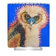 Barn Owl Painting Shower Curtain