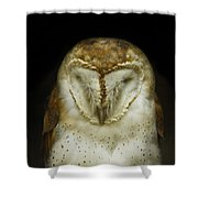 Barn Owl Shower Curtain