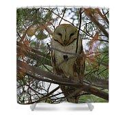 Barn Owl Sleeping Shower Curtain