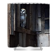 Barn Owl......i See You. Shower Curtain