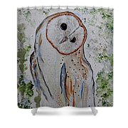 Barn Own Impressionistic Painting Shower Curtain