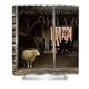 Barn Stock Shower Curtain