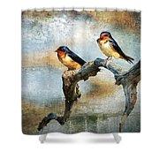 Barn Swallows Oil Shower Curtain