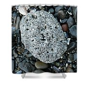 Barnacle Rock Shower Curtain