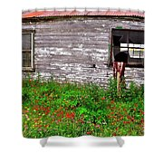 Barnside Flowers Shower Curtain