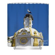 Baroque Church And Storks Nest Shower Curtain