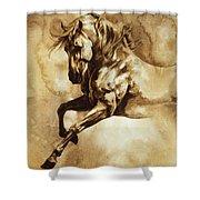 Baroque Horse Series IIi-i Shower Curtain