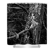 Barred In Black And White Shower Curtain
