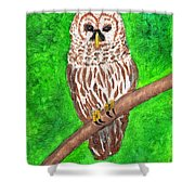 Barred Owl 08-18-2015 Shower Curtain
