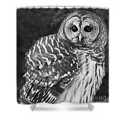 Barred Owl Beauty Shower Curtain