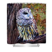 Barred Owl In The Rain Oil Painting Shower Curtain