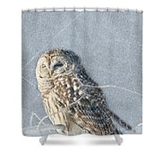 Barred Owl In The Snowstorm Shower Curtain