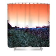 Barred Owl Trail Shower Curtain