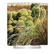 Barrel Cacti Shower Curtain