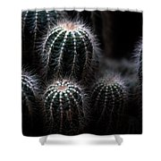 Barrel Cactus Shower Curtain