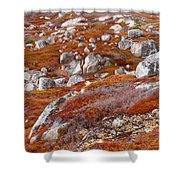 Barrens Shower Curtain