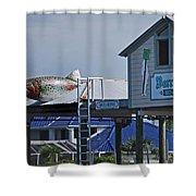 Barrier Island B N B Shower Curtain