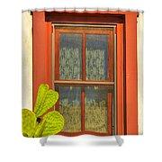 Barrio Window Shower Curtain