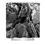 Basalt Textures Shower Curtain