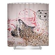Baseball Slide Shower Curtain