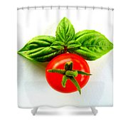 Basil And Cherry Tomato Shower Curtain