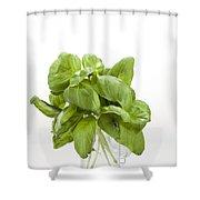 Basil Shower Curtain